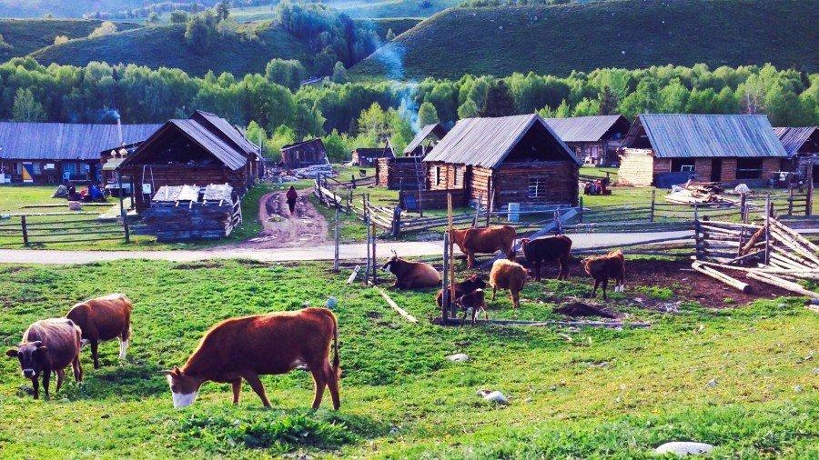 【新疆旅途故事】就讓一切靜止:禾木村
