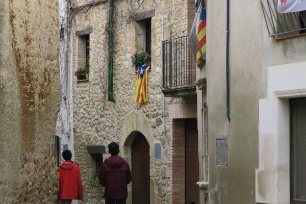 加泰隆尼亞獨立旗