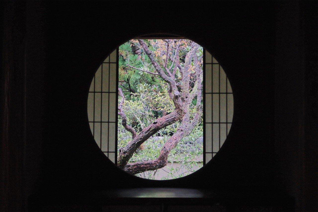 【京都景點推薦】信手捻來均是禪意的雲龍院,發現日本庭院之美
