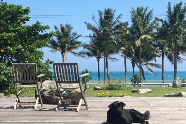 椰子海岸民宿3